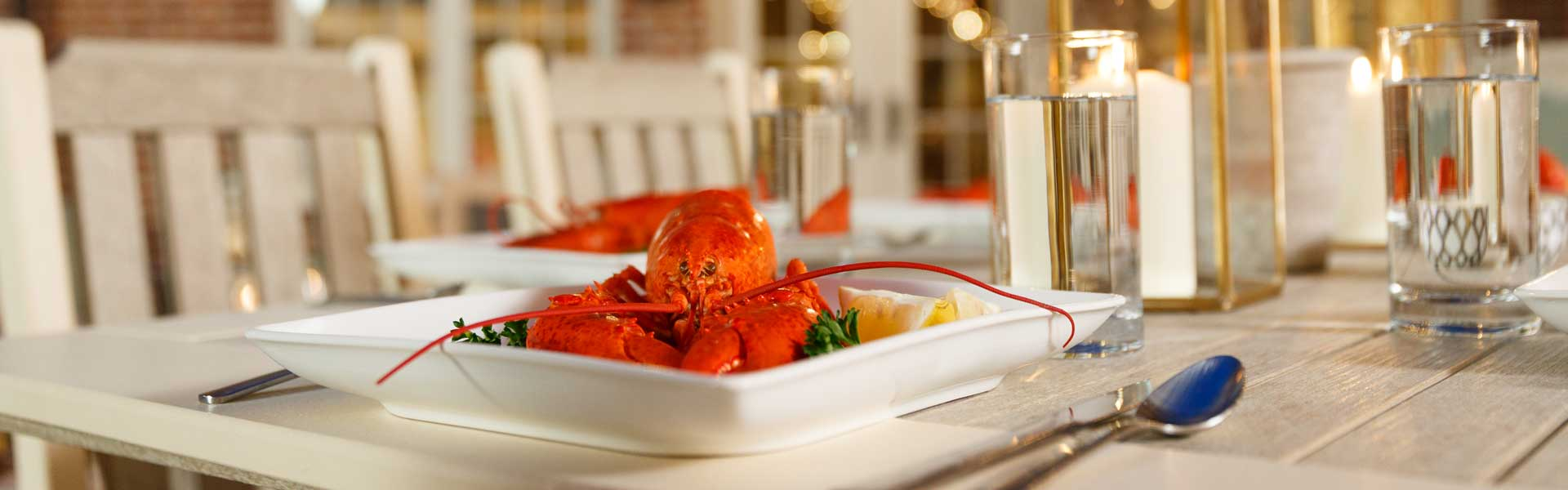 Lobster on plate on poly dining furniture set